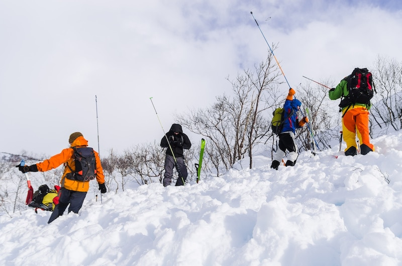 Search for Avalanche Victims with an Avalanche Probe